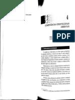 Competência Ambiental (AMADO, 2013)