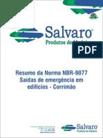 Resumo Norma NBR 9077