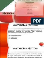 SUSTANCIAS PECTICAS
