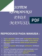 Sistem Reproduksi Download