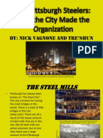 the pittsburgh steelers pdf-project