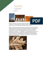 Bio Architecture MRice