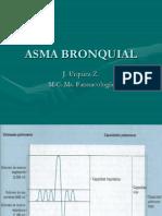 2. Asma Bronquial