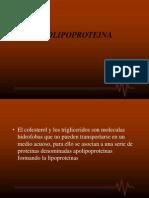 APOLOPOPROTEINA