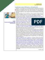 articolo gen2013 peppe in iran