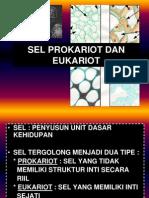 Sel Prokariot n Eukariot