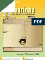 Como criar abelha Uruçu.  - MMA