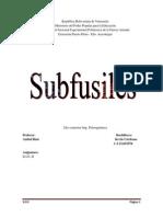Copia Sub Ametralladora (Autoguardado)
