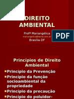 ambiental 1