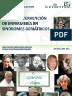 Plan de Intervención de Enfermeria en Sindromes Geriatricos