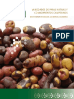 Catalogo Papas Cajamarca