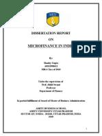 Final Micro Finance Report