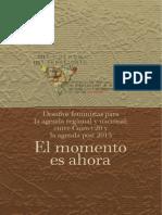 Desafíos_feministas_Cairo+20_Agenda_post2015 julio 2014 (1)