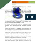 medioambienteelmer-130613165410-phpapp02
