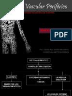 Semiologia Del Sistema Vascular Periferico 1209528122331204 9