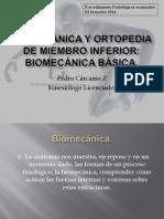 01 - Biomecanica General