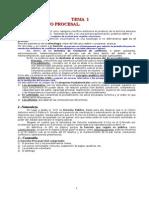 Anon - Derecho Procesal Civil (30 Temas)
