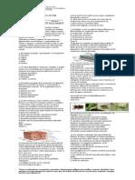 Evaluacion Sustentatoria Primer Periodo 2014