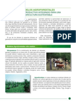 Libro Modelos Agroforestales