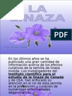 LALINAZA(10)AL