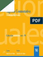 AlgebraConmutativaYGeometriaAlgebraica