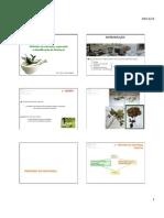 QF - Extração purificação e identificação