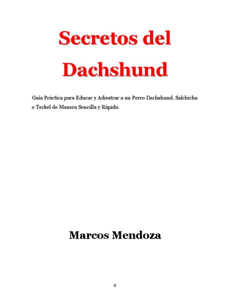 Secretos del Dachshund.pdf