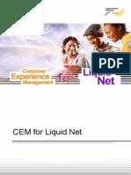 Cem for Ln Executive Summary 261012