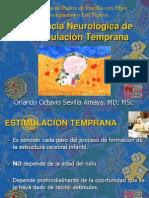 Importancia Neurologica de La Estimulacion Temprana-Orlando Sevilla