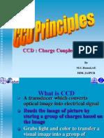 CCD Principals