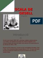 Escala_de_Gesell