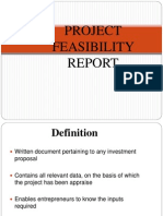 What is a Project Feasibility Report
