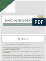 Criminalística TRABAJO SANGRE MODIFICADO  (1).pptx