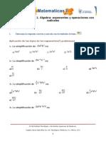 Exponentes y Operaciones Con Radicales