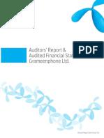 Auditors Report Financial Statements