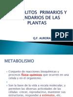 Metabolitos Primarios y Secundarios de Las Plantas. Apupe 3