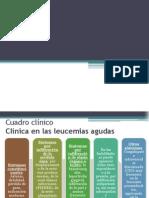 Leucemia Cuadro Clínico