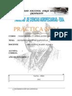 PRÁCTICA Nº04 SAPONIN