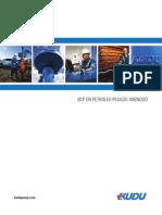 PCP in Sandy Heavy Oil Spanish