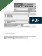 Formato de Declaracion de Gastos