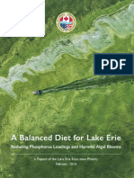 A balance diet for Lake Erie