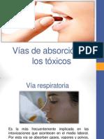 Vías de Absorción de Los Tóxicos Clave (1)