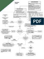 Esquema Proceso Monitorio en España