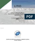 INFORME-LITIO-FINAL...pdf