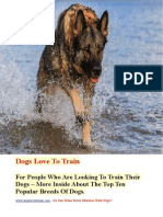 Dogs Love to Train