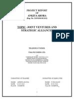Project Report on Section 25 Companies - Avijit Vasu
