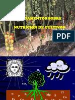 Fertilización y Deficiencias_1