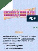 Vaginitis Bakteri