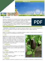 recomendaciones nutricionales uretritis