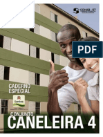 do04082014 - CANELEIRA 4